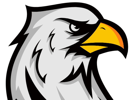 footer logo eagle